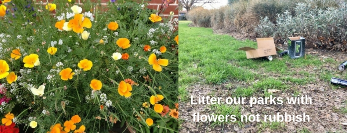 Litter our parks with flowers not rubbish